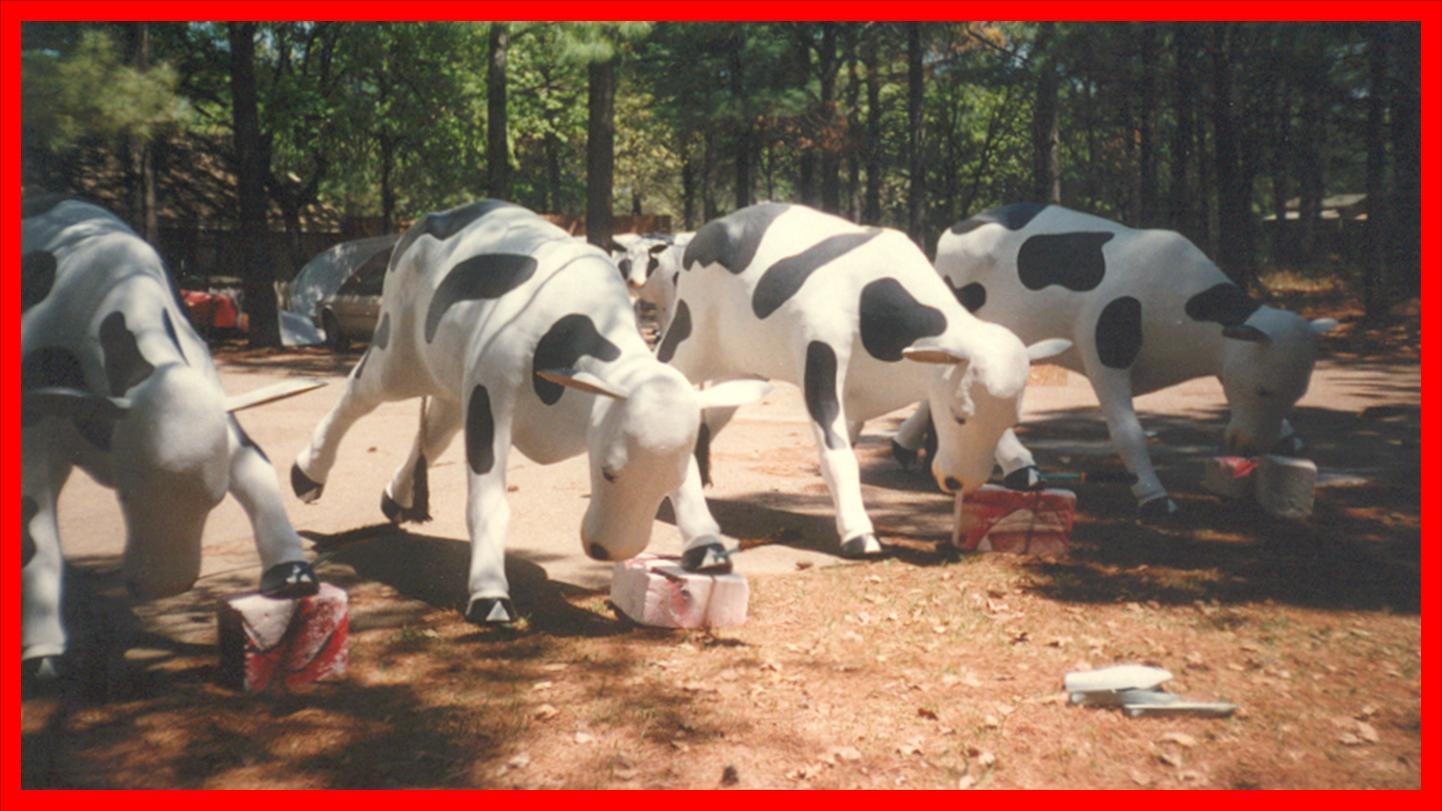 Custom & Specialty Fiberglass—Animals 1
